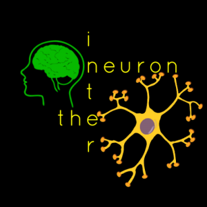 the interneuron